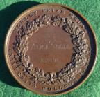 London, University College, Henry Morley medal, large bronze prize medal, by N Macphail for Pinches